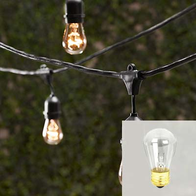 Rent Suspended Edison String Lights - Free Shipping Nationwide