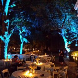Outdoor led uplight rental american party lights aloadofball Image collections